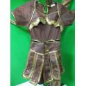 Disfraz de Guerrero. Talla 6-9 años