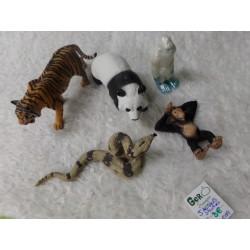 5 Animales Salvajes....